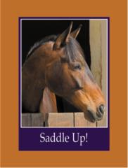 Birthday Card: Saddle Up! - Item # GC Bay