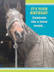 Birthday Card: It's your birthday! Celebrate like your horse would.. - Item # GC Mud 2