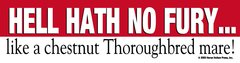 Bumper Sticker: Hell hath no fury..like a Thoroughbred Chestnut mare! - Item # B Hell