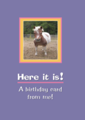 Birthday Card: Here it is! A birthday card from me! - Item # GC Mini