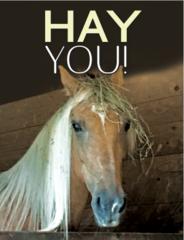 Birthday Card: Hay You! Item# GC B Foxy