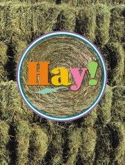 Congratulations Card: Hay - Item # GC 02Hay