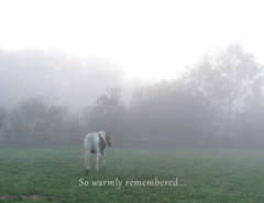 Sympathy Card: So warmly remembered... - Item # GC 10 Sym