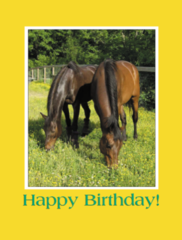 Birthday Card: Happy Birthday! - Item # GC Ted