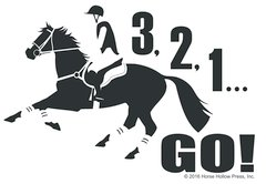 Clear Vinyl Window Sticker: 3, 2, 1 GO! Eventing Window Sticker - Item # D Eventer