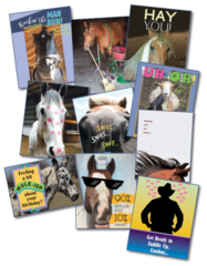 25 Best- Selling Western & Generic MIXED CARDS Retailer Pack - 25 Mixed Birthday, Sympathy, Thank you, etc. Cards, Western and Generic Horse Designs - Item # RP-W Mixed