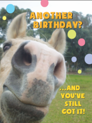Birthday Card: Another birthday and you've still got it! - Item # GC Greg