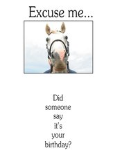 Birthday Card: Excuse me...Did someone say it's your birthday? - Item # GC Ex
