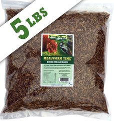 Mealworm Time® Dried Mealworms - 5 LBS