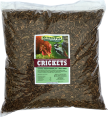 Land & River Combo 10 lbs / Crickets-5 lb + River Shrimps-5 lb