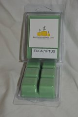 Eucalyptus Triple Scented Wax Fragrance Melts ( Shell Holds 6 Cubes)