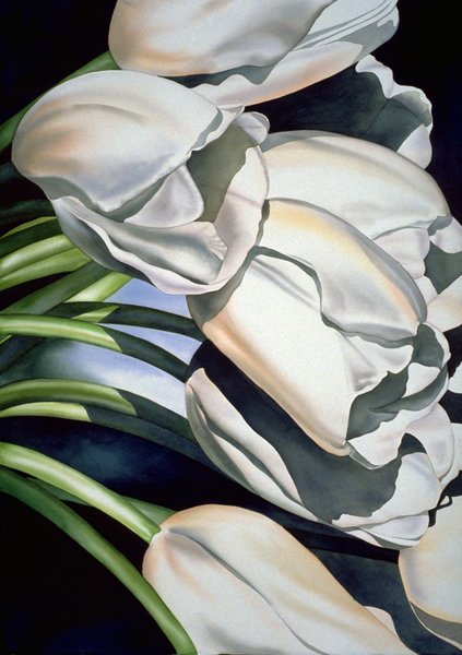 Signed 13x19 Print White Tulips Birgit O Connor Watercolors