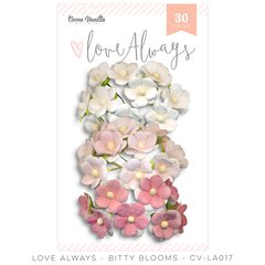Cocoa Vanilla Love Always Bitty Blooms