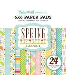 Echo Park Spring 6 x 6 Paper Pad
