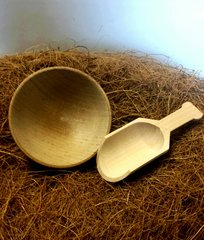 Wooden Bowl and Scoop Set