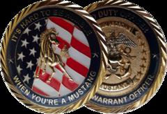 Stars & Stripe Coins