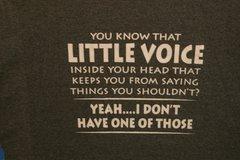 Little Voice inside your head