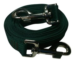 Beast-Master Polypropylene Dog Tether Forest Green