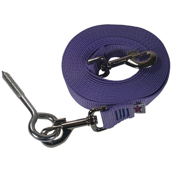 Beast-Master Nylon Dog Tether with Lag Screw- Lavender