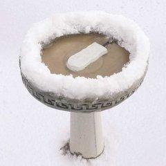 Ice Eliminator Bird Bath De-Icer