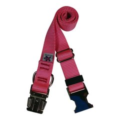 Beast-Master Nylon Dog Collar Metal Hardware-Pink