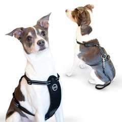 Travel Safety Pet Harness