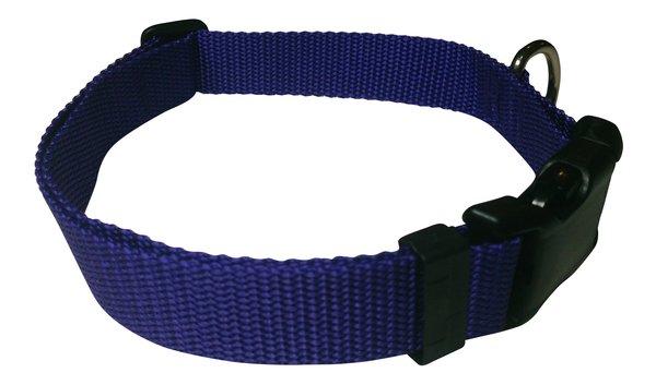 Beast-Master Polypropylene Dog Collar Vivid Violet