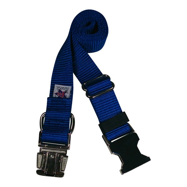 Beast-Master Nylon Dog Collar Metal Hardware-Royal Blue