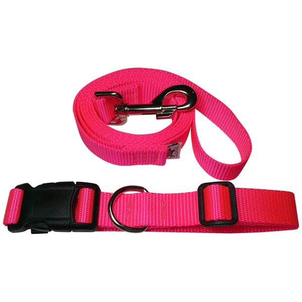 Beast-Master Neon Dog Collar and Leash Hot Pink