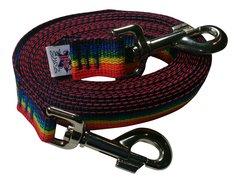 Beast-Master Polypropylene Dog Tether Rainbow Spectrum