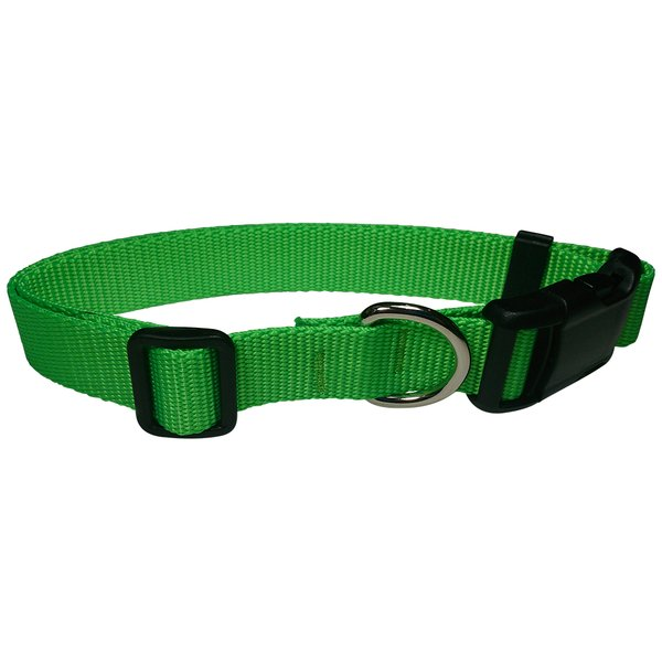 Beast-Master Fluorescent Dog Collar Electric' Green
