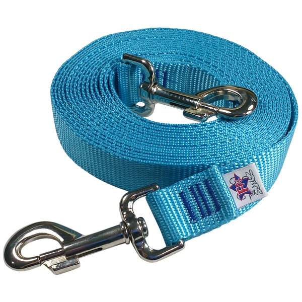 Beast-Master Nylon Dog Tether Ice Blue