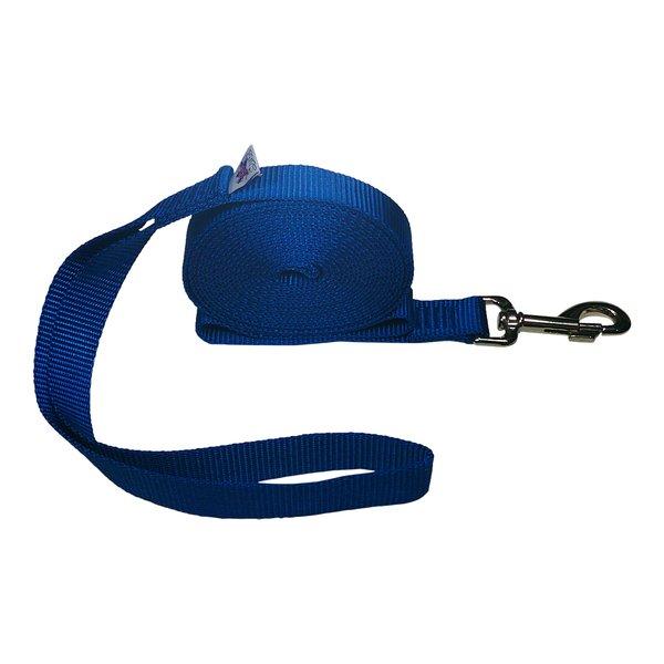 "Beast-Master 1"" Nylon Dog Leash Royal Blue"