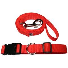 Beast-Master Neon Dog Collar and Leash Flamin' Orange
