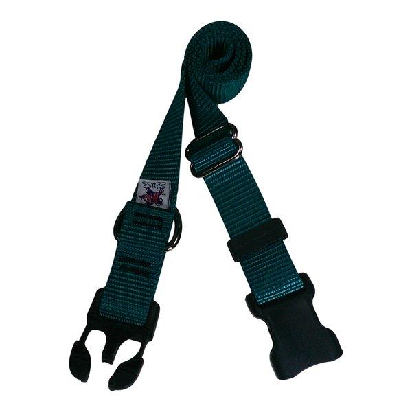 Beast-Master Nylon Dog Collar Plastic Hardware-Teal