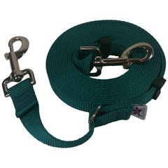 "Beast-Master Adjustable 1"" Nylon Dog Tether (Medium Dogs) Teal"