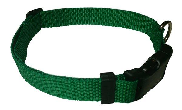 Beast-Master Polypropylene Dog Collar Shamrock Green