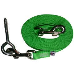 Beast-Master Nylon Dog Tether with Lag Screw (Neon) Electric' Green