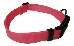 Beast-Master Polypropylene Dog Collar Polly Pink