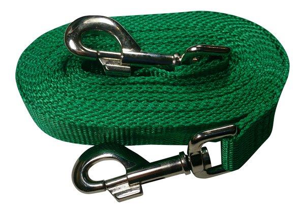 Beast-Master Polypropylene Dog Tether Shamrock Green