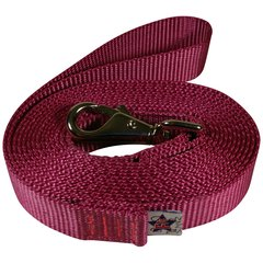 "Beast-Master 1"" Nylon Dog Leash with Weezel Snap Rose"