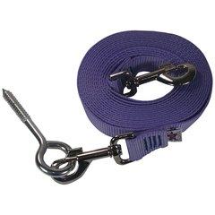 Beast-Master Nylon Dog Tether with Lag Screw- Lavender
