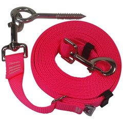 "Beast-Master Adjustable 1"" Nylon Dog Tether w/Lag Screw (Medium Dogs) Hot Pink"