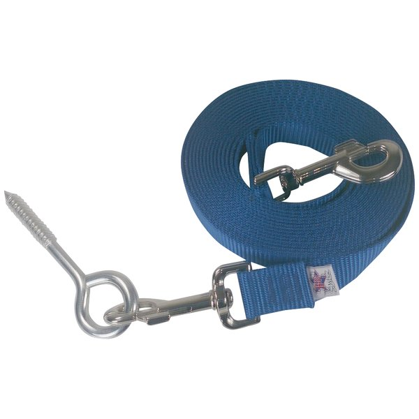Beast-Master Nylon Dog Tether with Lag Screw-Ice Blue