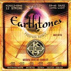 EARTHTONES ACOUSTIC 12 STRINGS