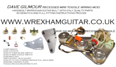 Dave Gilmour Recessed Mini Toggle 7 way wiring kit