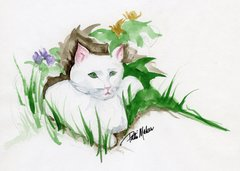 White Cat Notecards (set of 8)