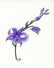 Orchid Notecards (set of 8)