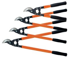 Lopper Shears, Pruning