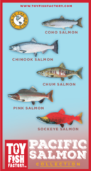 Pacific Salmon Toy Fish Set